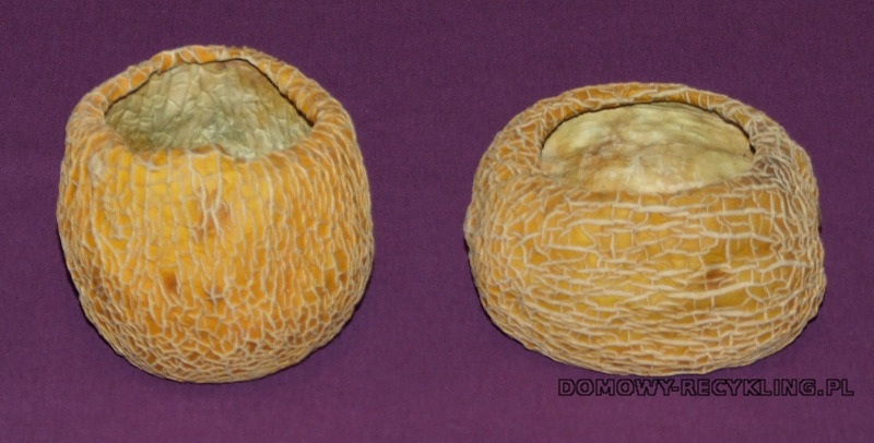 Ususzone skórki melona